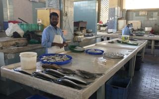 إغلاق مؤقت لسوق السمك بالفجيرة