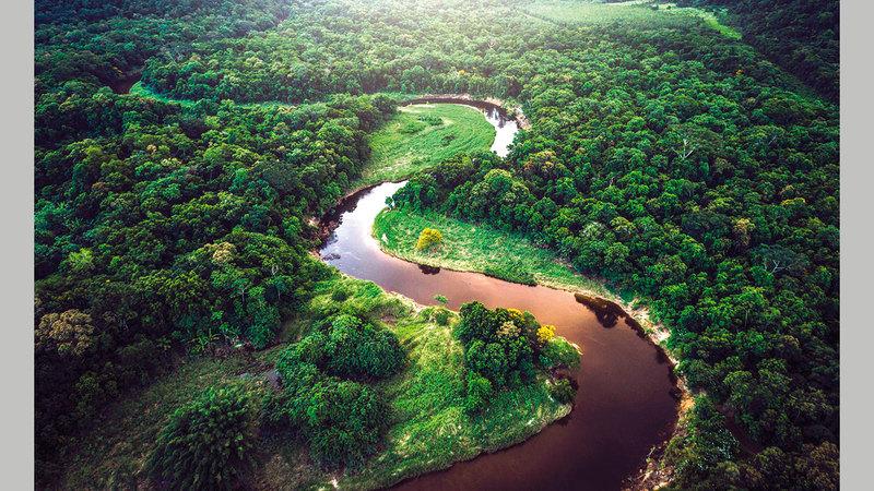 الحفاظ على الأمازون أمر بالغ الأهمية للحفاظ على حرارة الأرض.  أرشيفية