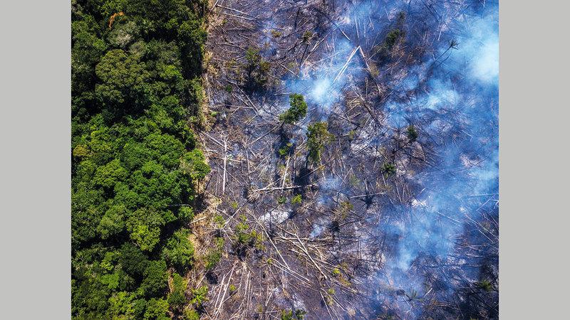 «صندوق الأمازون» هو آلية لجمع تبرعات لمراقبة البيئة وإدارة الغابات بالمنطقة.  أرشيفية