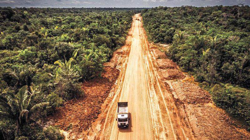 العلماء يواصلون بذل الجهود لإنقاذ الأمازون.  أرشيفية