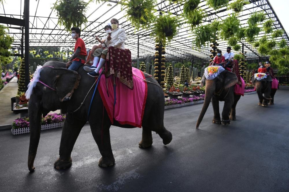 الحفل ينظم سنوياً بحديقة للنباتات شرقي بانكوك. رويترز