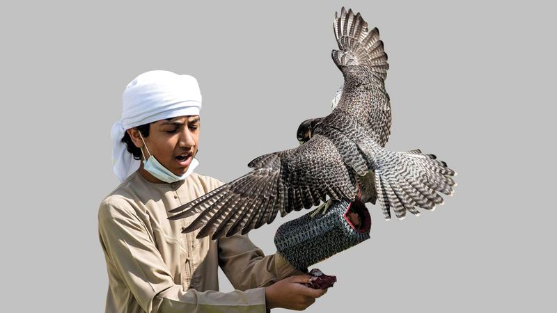 الصقار أحمد محمد المزروعي.          من المصدر