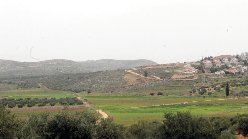 340 دونماً نجح الفلسطينيون في استرجاعها بقرية قريوت.  الإمارات اليوم