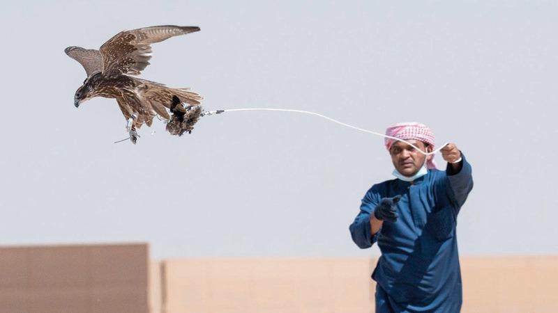 رياضة الصيد بالصقور مرتبطة بتراث منطقة الخليج بصورة عامة.  من المصدر