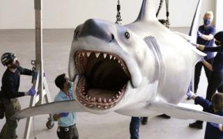 الصورة: «متحف الأوسكار».. معروضات ترفض العنصرية وضعف تمثيل النساء