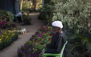الصورة: بالصور.. مهرجان الورود في مصر