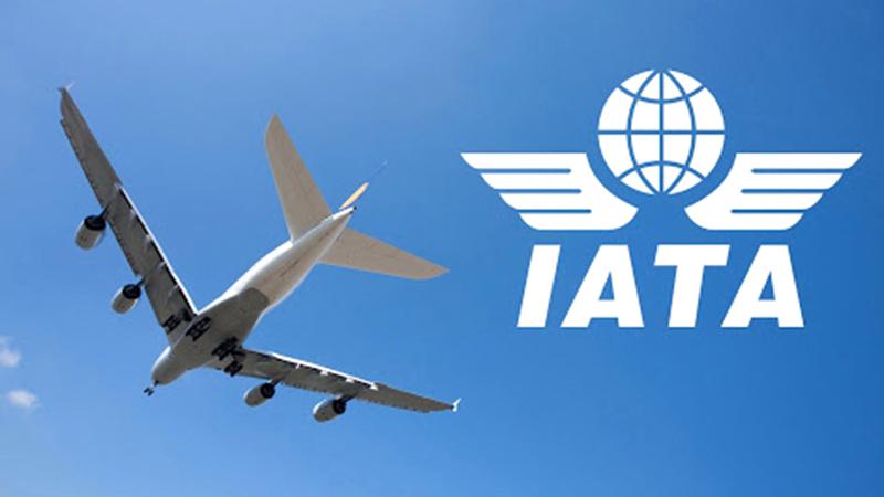 «إياتا»: عدد كبير من شركات الطيران طلبت الانضمام لاستخدام تطبيق تصريح السفر الرقمي.  أرشيفية
