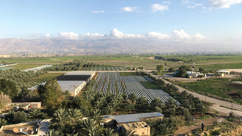 سلب «عين الحلوة» يحرم السكان المياه ويضرّ بزراعتهم.  الإمارات اليوم