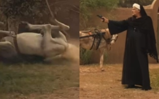 """الصورة: حصان """"موسى"""" يضع صناع العمل ومحمد رمضان في موقف حرج"""
