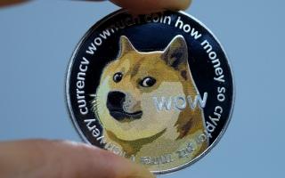 """الصورة: عملة """"الكلب المزحة"""" تكسب 20 مليار دولار في 24 ساعة"""