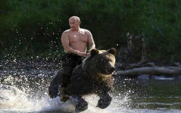 الصورة: بالفيديو.. بوتين يواصل ممارسة هواياته الخطرة في قاع البحار ويقترب من الدببة والنمور