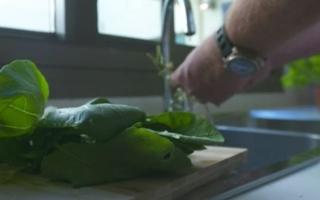 الصورة: رجل ينتج ويستهلك ويعيد تدوير كامل طعامه في المكان ذاته بدبي