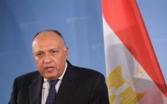 الصورة: شكري يسلم رئيس جنوب أفريقيا رسالة عن موقف مصر من قضية سد النهضة