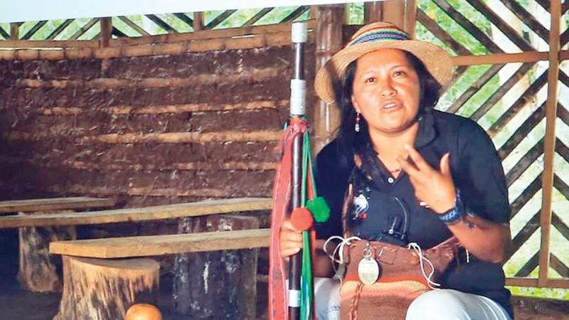 ساندرا بينيتا ناضلت بلا هوادة من أجل مجتمعات السكان الأصليين.   أرشيفية