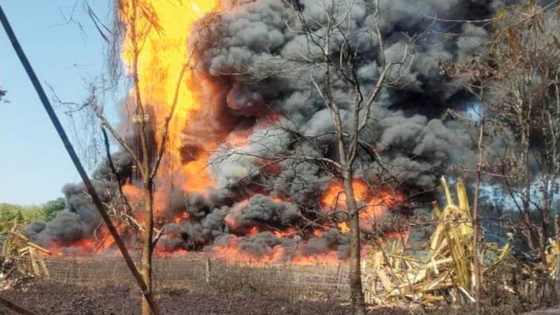 حرائق الغابات تسهم في زيادة الفقر المائي.  أرشيفية