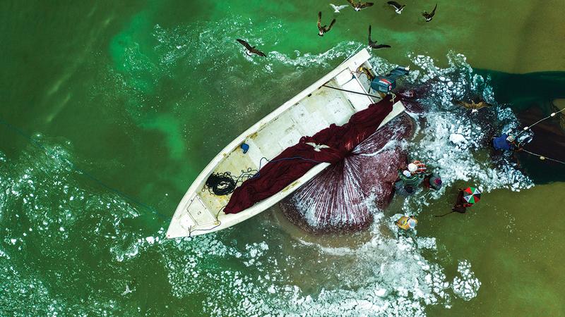 «الدرون ثقافة وفنون» سلّطت الضوء على كيفية الاستفادة من هذه الطائرة في الجانب الفني.   من المصدر