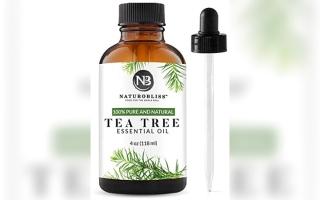 الصورة: صحة.. فوائد زيت شجرة الشاي.. صحية وجمالية