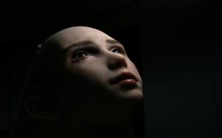 الصورة: بالصور: روبوت للتفاعل مع من يعانون الوحدة والعزلة