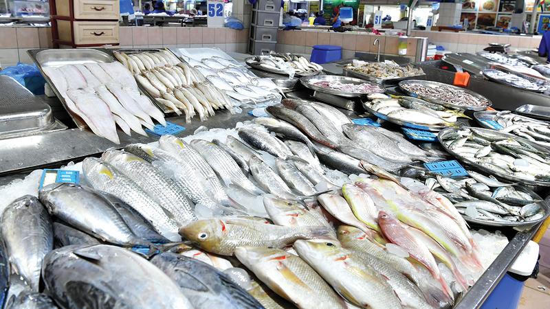 أبرز تحديات تجار السمك وجود مصنع لتجهيز الأسماك.   تصوير: نجيب محمد