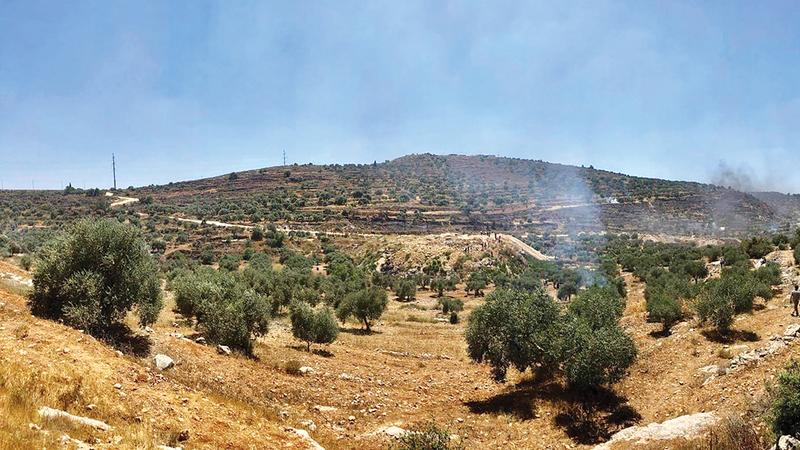 «أفيتار» تلتهم 800 دونم من أراضي بلدة بيتا الزراعية.   الإمارات اليوم