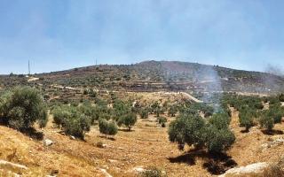 الصورة: «جبل صبيح».. تمدّد استيطاني لعزل شمال الضفة عن جنوبها