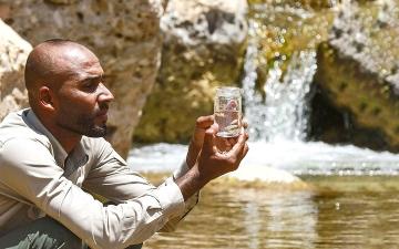 الصورة: الأردن.. الموطن الأخير لـ «الأفانيس العربي»