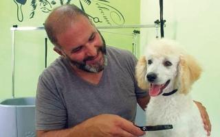 الصورة: فلسطيني يحقق حلمه بإقامة أول فندق للحيوانات الأليفة