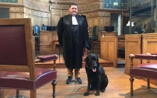 الصورة: قصة الكلب الذي صار نجم المحاكم الفرنسية