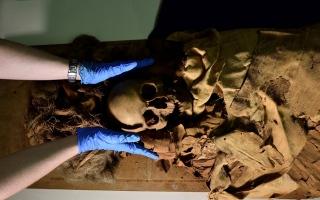 الصورة: مومياء مصرية تخضع لفحص الأشعة المقطعية في إيطاليا