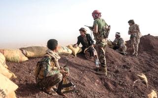 الصورة: عمليات عسكرية نوعية للجيش اليمني في محيط الجوف وريف صنعاء