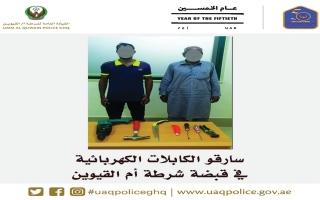 الصورة: ضبط شخصين يسرقان الكابلات الكهربائية في أم القيوين