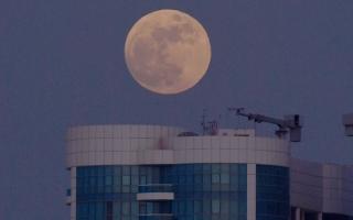 الصورة: بالصور.. آخر قمر عملاق لعام 2021 في سماء أبوظبي