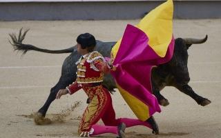 الصورة: بالصور..عودة أخطر الرياضات الإسبانية