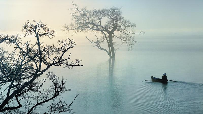 لي هوانغ لونغ «فيتنام».   من المصدر