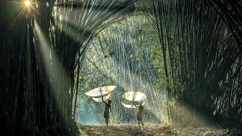 فرانس إيدي بونجاران سيريجار «إندونيسيا».   من المصدر