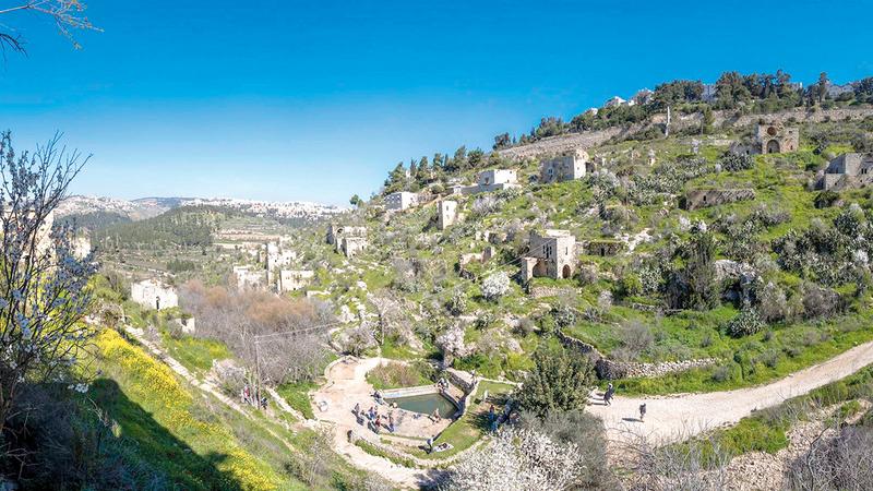 قرية «لفتا» غنية بالآثار الكنعانية وعيون المياه والأشجار المثمرة.   الإمارات اليوم