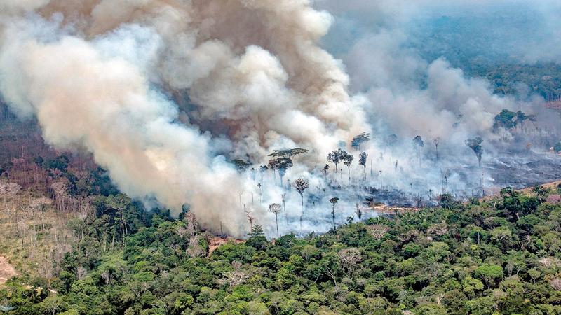 النيران ظلت تلتهم أشجار الأمازون على مدار السنين. غيتي