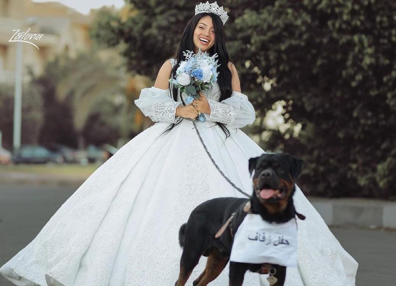 بلاغ عاجل ضد هبة مبروك صاحبة «حفل زواج» من كلب - حياتنا - مشاهير - الإمارات اليوم