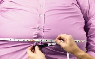 الصورة: إهمال السمنة يسبب أمراض القلب والسكري وسرطان القولون