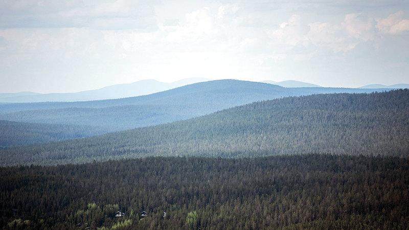 سجلت منطقة لابلاند القطبية الفنلندية أعلى درجات حرارة لأكثر من قرن.   أ.ب