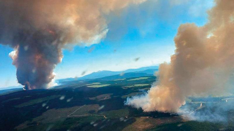 حرائق غابات بسبب ارتفاع درجات الحرارة في كولومبيا البريطانية.   أ.ف.ب