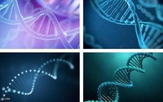 """الصورة: دراسة """"تفجر مفاجأة"""" عن علاقة حمضنا النووي بأسلافنا المنقرضين"""