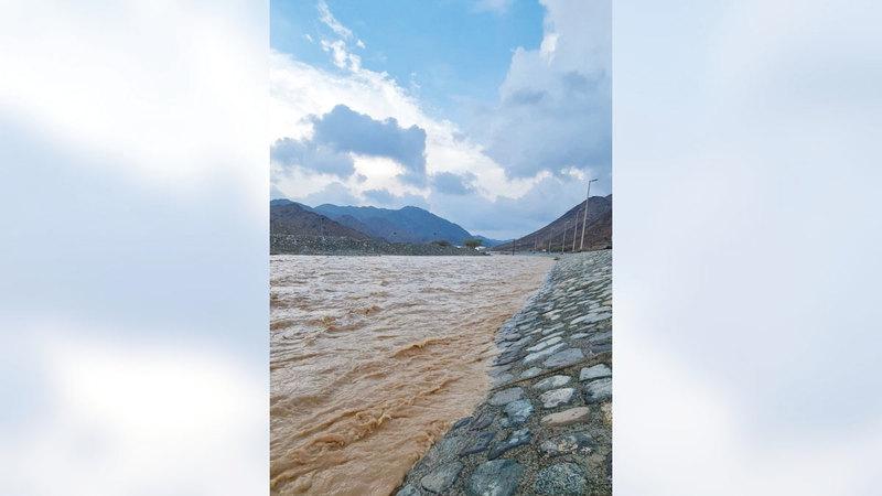 44.2 مم أعلى كمية أمطار سُجلت في الدولة.   الإمارات اليوم