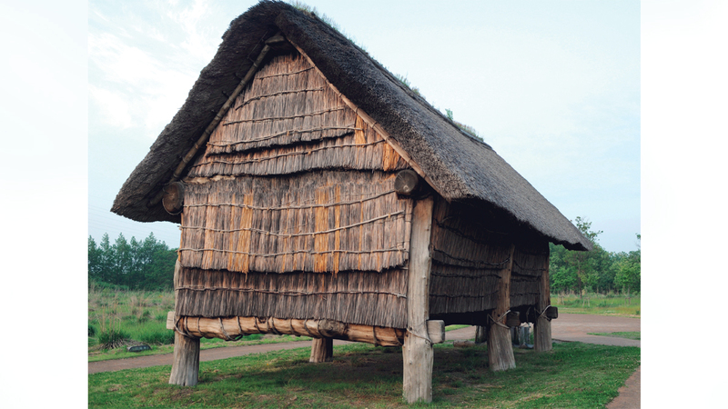 بيت أعيد بناؤه ينتمي لحضارة جومون في موقع حفريات شاناي ماروياما الأثري.  إي.بي.إيه