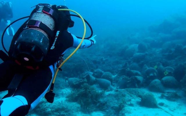 الصورة: متحف يوناني تحت الماء يتيح للزائرين «الغوص تحت التاريخ»