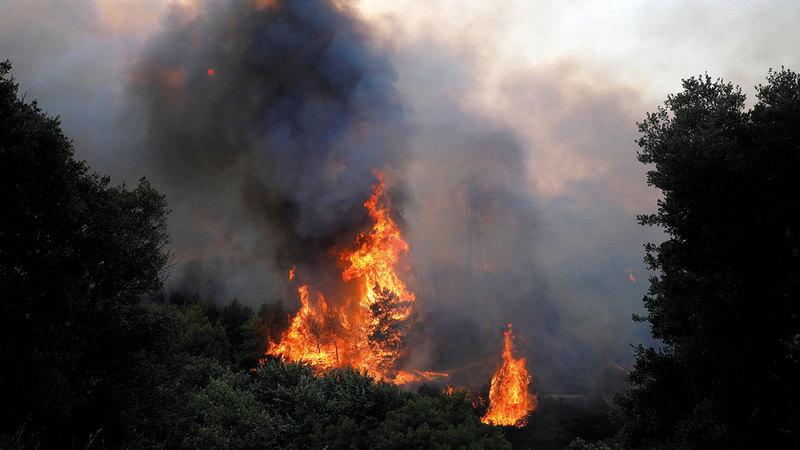 أعمدة الدخان وألسنة اللهب تتصاعد في فاربوبي شمال أثينا.  رويترز