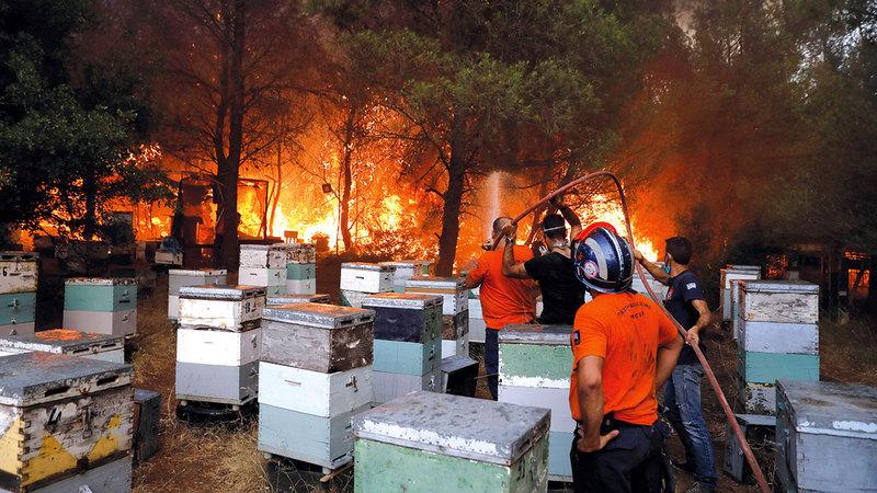 متطوعون يعملون على مكافحة النيران.  رويترز