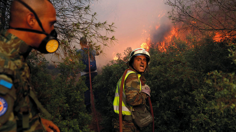 النيران تواصل التقدم في الغابات.  رويترز