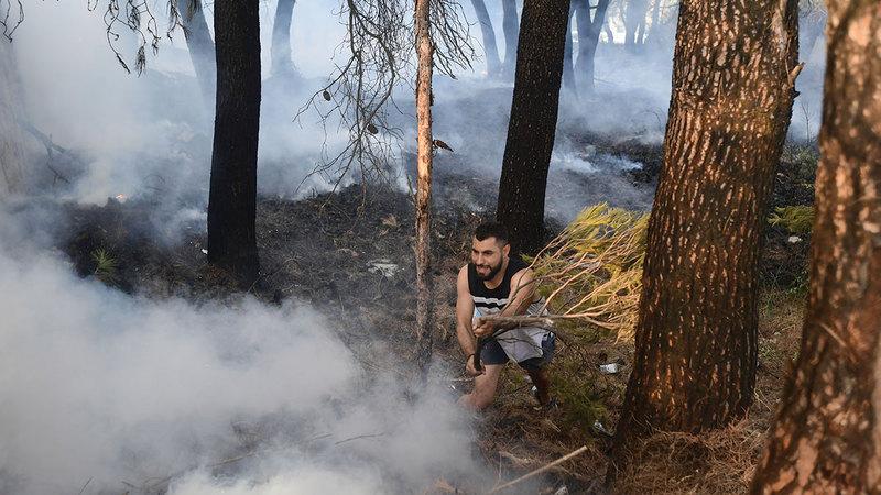 ألسنة اللهب التهمت مساحات واسعة من الغابات.   أ.ب