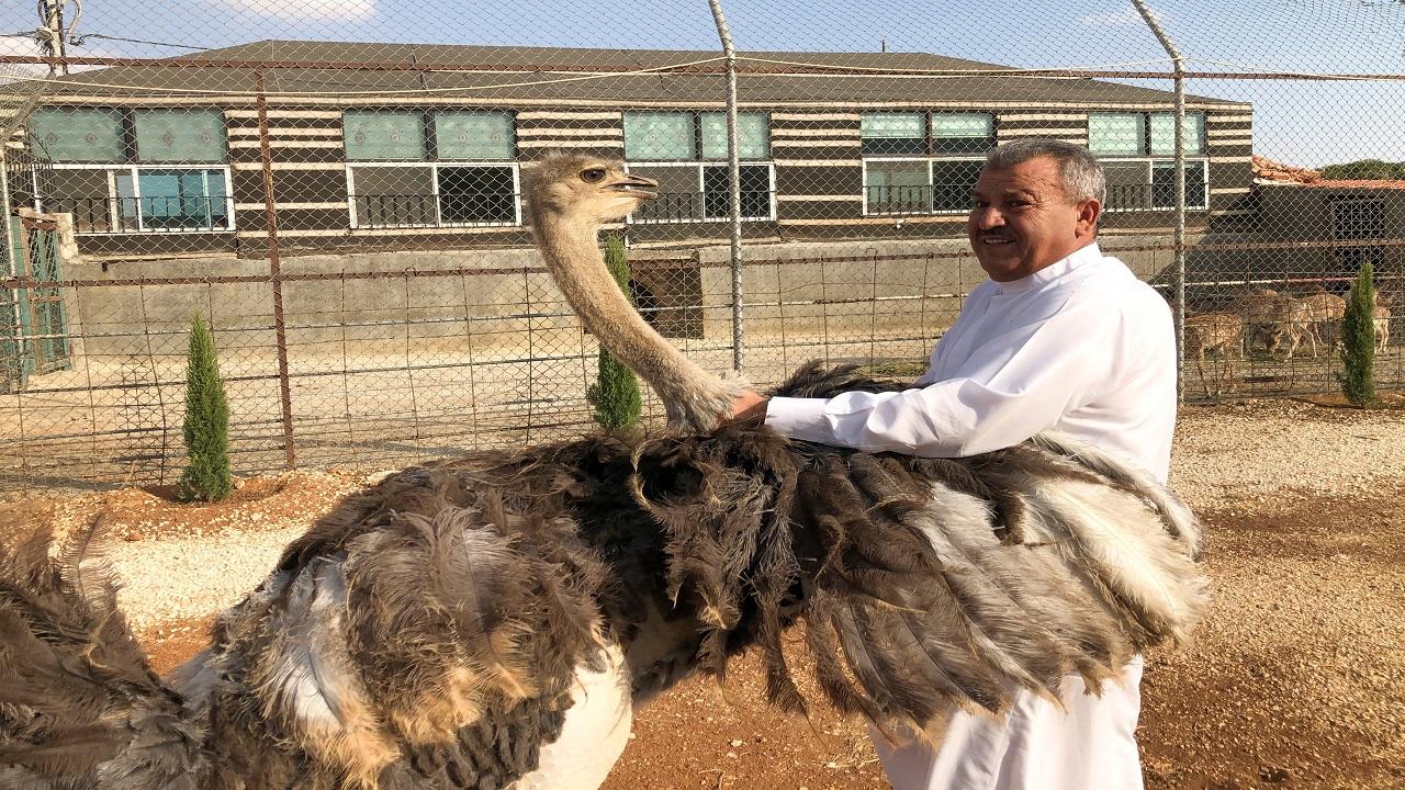 حسن العبوس يربي 30 غزالاً وحيوانات أخرى وطيوراً برية. رويترز